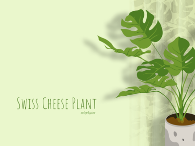 Swiss Cheese Plant with curtain(seamless pattern)