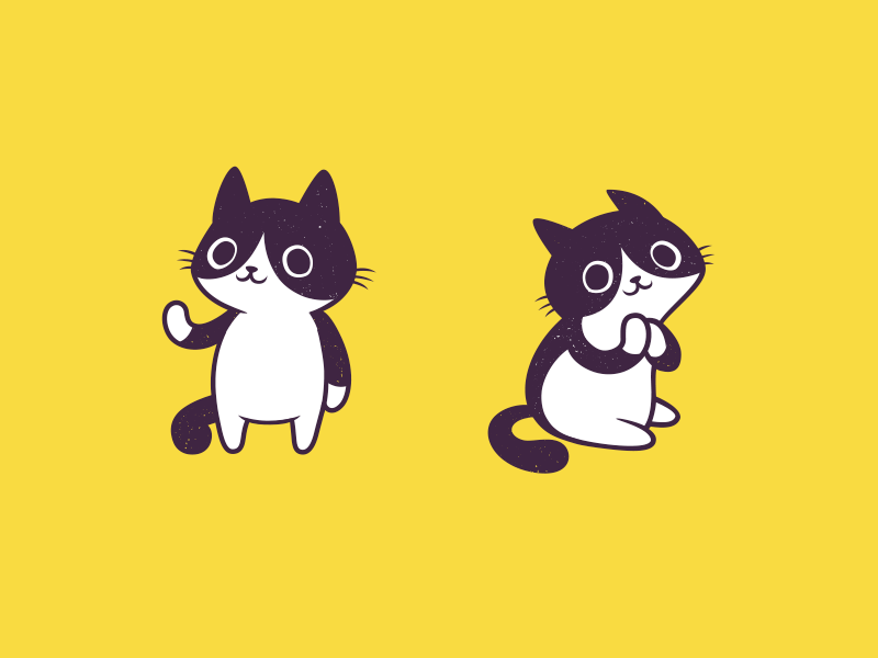 Pied Cat sticker funny illustration mascot design characterd cute cat