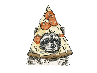Trash Panda Pizza illustration procreate snack pizza raccoon
