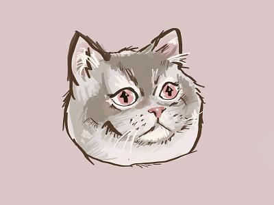 Upvote kitty sticker upvote kitty imgur