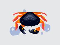 Crab Stranding