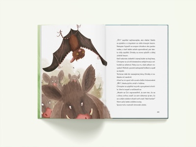 Strašidielka a Bubo-bubo book illustration product design kids children book cover layout book