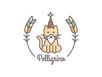 Cat Wizard logo