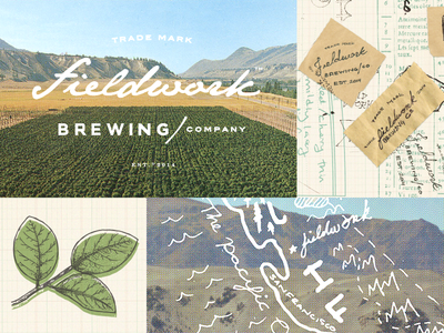 Concept for Fieldwork Brewing Co illustration vintage craft beer identity logo design texture rough handmade rustic