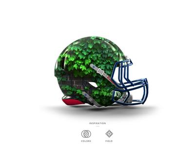 Cubs Football Helmet 1 of 30