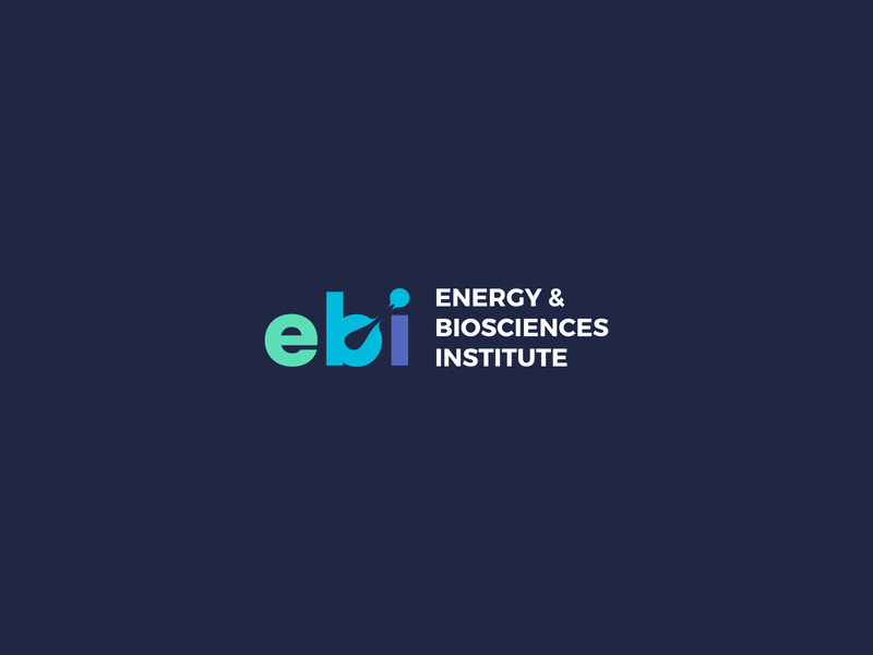 ebi Logo Unused Concept letters mark design typography branding logo negative space color bright agrib unused movement motion colorful institution institute biosciences bioscience energy ebi