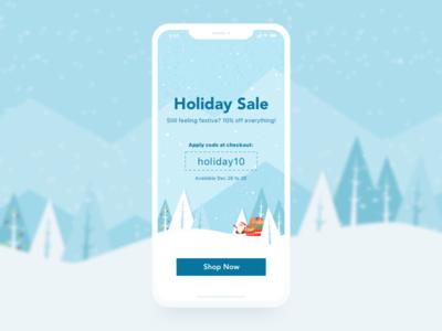 Holiday Sale Splash