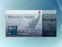 Music Player | Daily UI #009