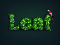 leaf text