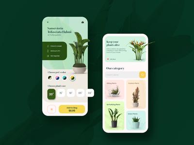 Plant Shop App Design flower purifying air application ux ui nature user interface shop shopping tree plants design app