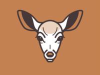 Camp Runamok - Dufftown Does Logo