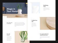 Trica — Levitating Plant