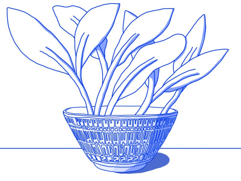 Bowl fun illustrator design illustration