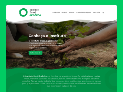 Brazilian Organic Institute - Website Design hero image website design institute organic food