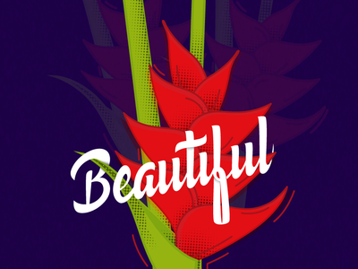 beautiful letering and illustration flowers letters vector illustration lettering graphicdesign