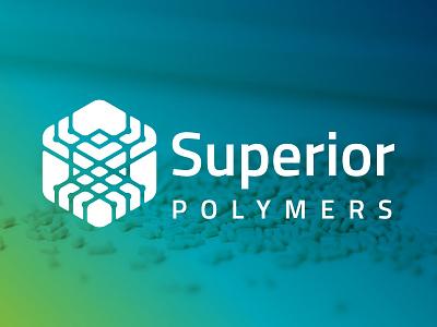 Logo Design branding spider polymer logo