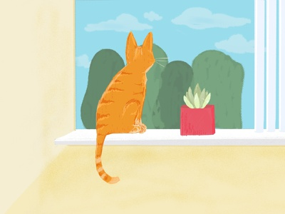 Cat in Window kitten illustration succulent cat window procreate art procreate orange cat tabby cat