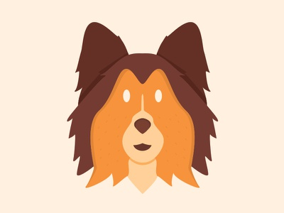 Shetland Sheepdog animals cute flat vector design illustration dog puppy