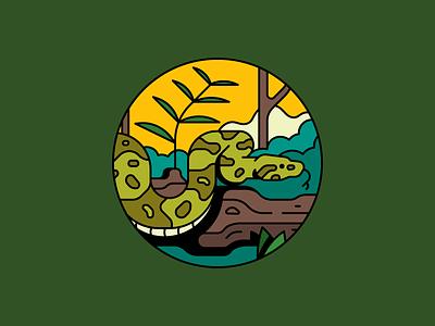 Boa Constrictor forest stroke rainforest leaf branch jungle snake constrictor boa