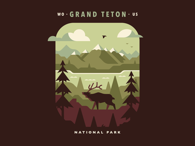 Grand Teton National Park nature lake pine national park atmospheric landscape bird tree mountain elk teton