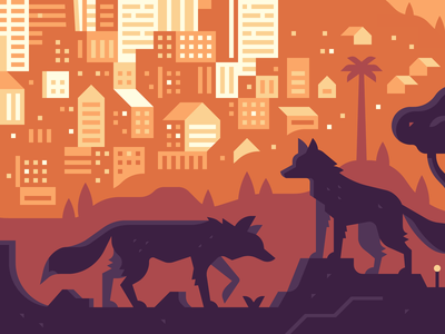 Teaser Crop: Coyotes coyote nature palm tree city skyline silhouette wildlife buildings houses