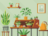 Houseplants – Spread Privacy: Donations