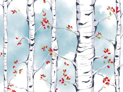 Birch Study 2 photoshop watercolor texture pattern illustration trees birch