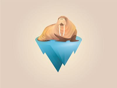 Hello Walrus beq illustration forsale branding logo ice animal walrus
