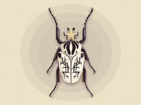 Vector Beetle