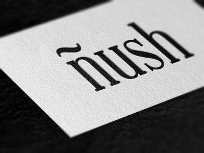 ñush logo nush photography photo business card
