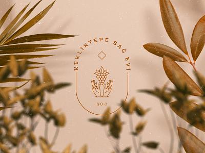 Kekliktepe Vineyard House illustration branding lifestyle hotel design logotype logo