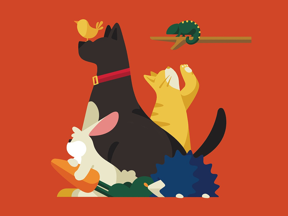 Animal Companions vector color flat animal dog pet character illustration