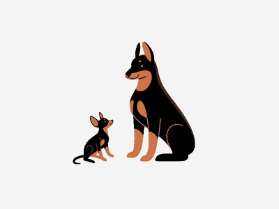 Big and small. Doberman and Toy Terrier dogs toy terrier doberman cartoon animal round cute character animal illustration vector flat  design animal character design doggy dog