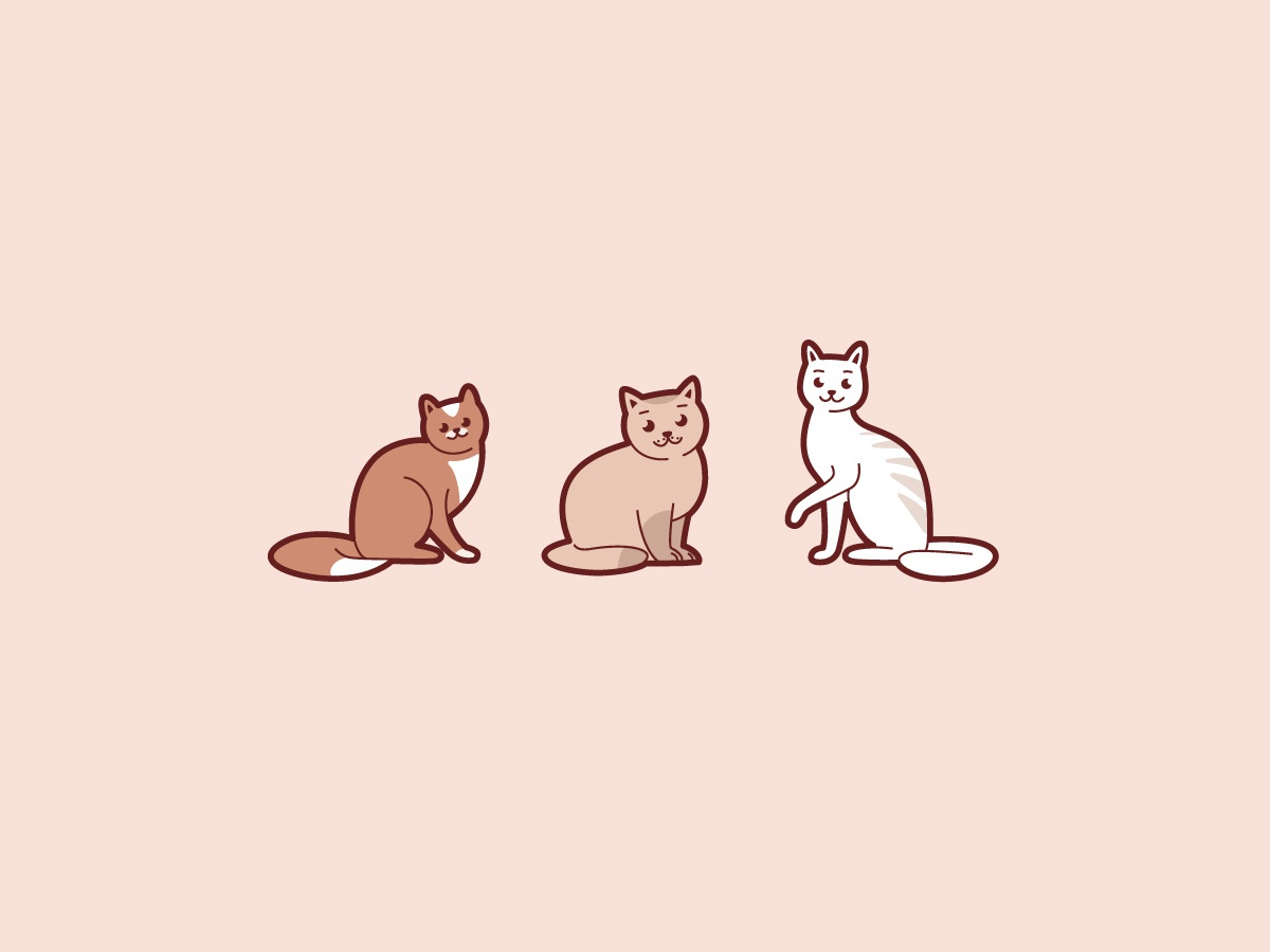 Three Cats Thin Medium Thick Simple Cat Kitten Design Flat