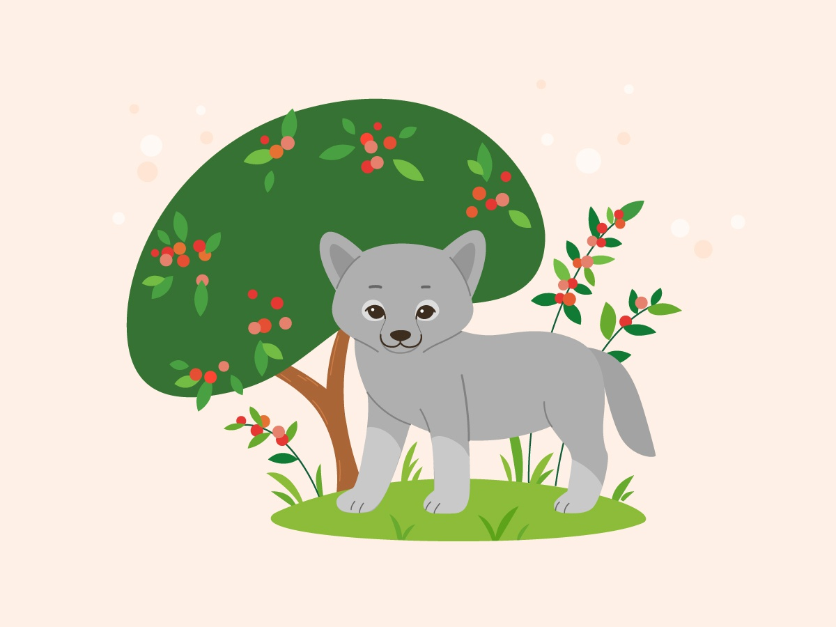 Little Wolf lupus wolf cub wolf character cute animal character character design illustration vector flat  design cartoon wolf wolf