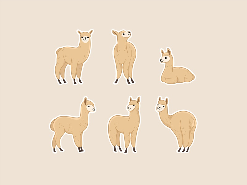 Cartoon alpaca character. animal set line icon kawaii illustration kawaii cartoon alpaca alpaca round cartoon animal character design illustration animal flat  design vector animal character
