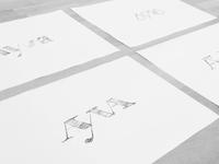 Ayva Sketches