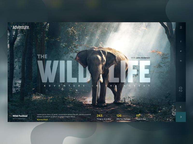 Wild Life - Landing Page web uiux page landing zoo adventure wildlife rainforest forest extinct elephant animals