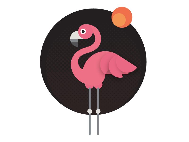 Flamingo dribbble 800x600