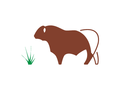 Latigo Logo 2 livestock ranching design agriculture ranch management