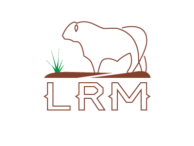Latigo Logo Outline angus red angus livestock ranching design agriculture ranch management