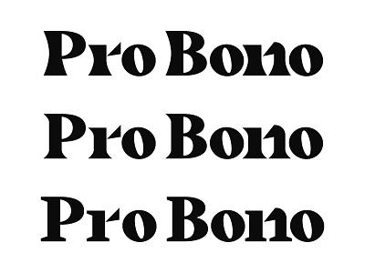 Serif Stud nonprofit pro bono angle family font serif typography black design type