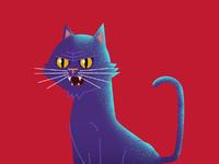 Black cat 1200x1200