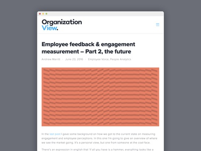 OrganizationView blog design