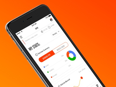 Workout Tracker - Personal Home - My Stats