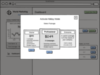 Wireframe pricing