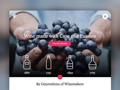 Landing Page Concept landing page bottles blue clean grape wine