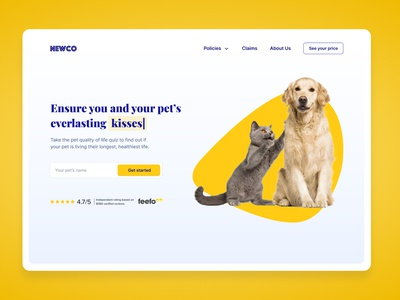 Pet Insurance UI Concept ui design landing page design landingpage uidesign colourful pets insurance