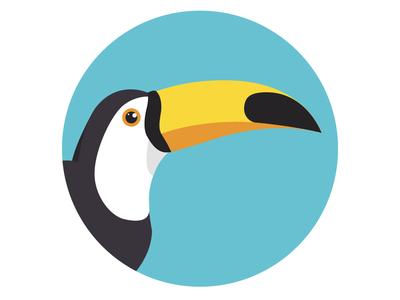 Toucan Flat Illustration