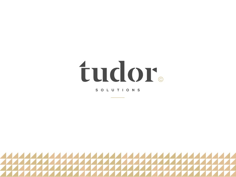 Tudor Solutions - Logo Design training center teaching coaching law firm luxury logo school education logo consulting lettermark typogaphy wordmark minimal vintage graphic design minimalistic mark branding logo